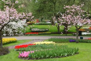 Per il giardino e gli spazi verdi progetto terra viva
